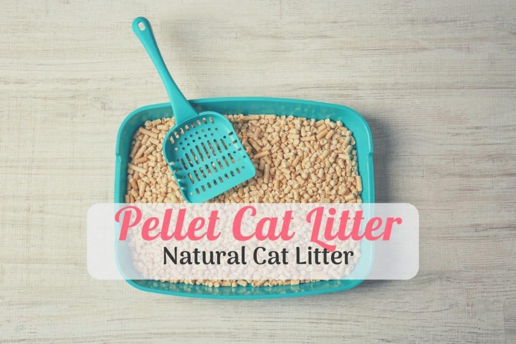 Natural Best Pellet Cat Litter in a box