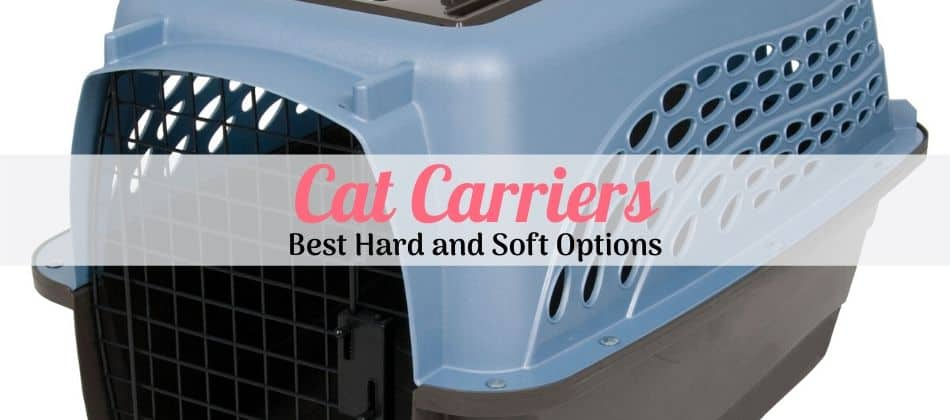 the best plastic cat carrier blue