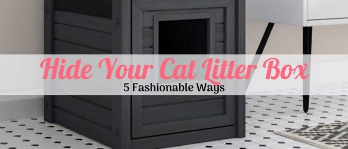 a hidden cat litter box